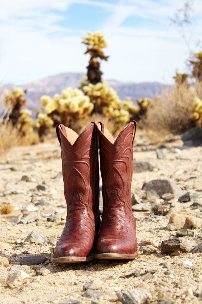 Tecovas Jessie Ostrich cowboy boots in beautiful Bourbon
