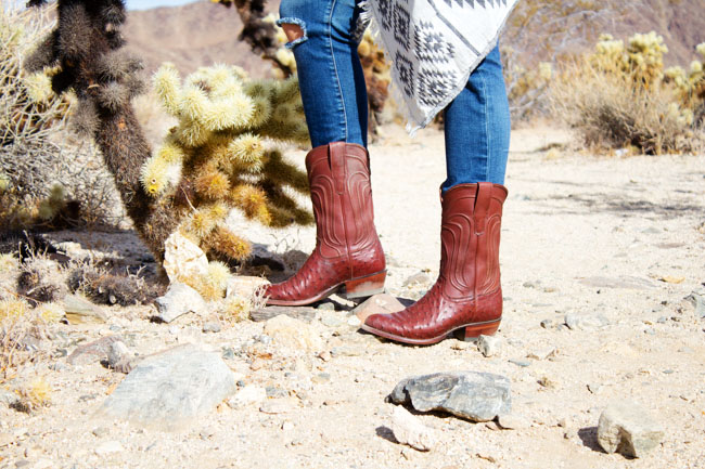Tecovas cowboy boots in the Cholla cactus garden