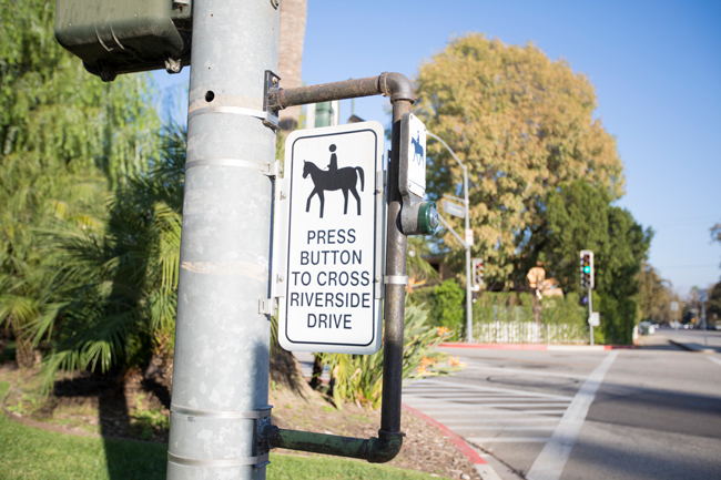 cross walk buttons for the equestrians