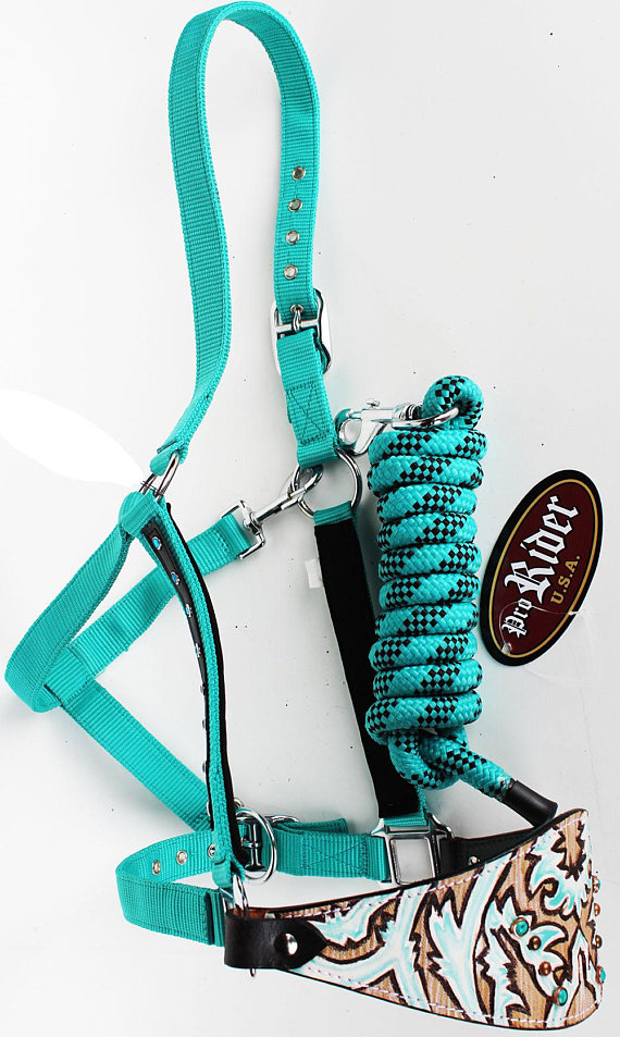 turquoise bronc halter with a beautiful painted and tooled nose band
