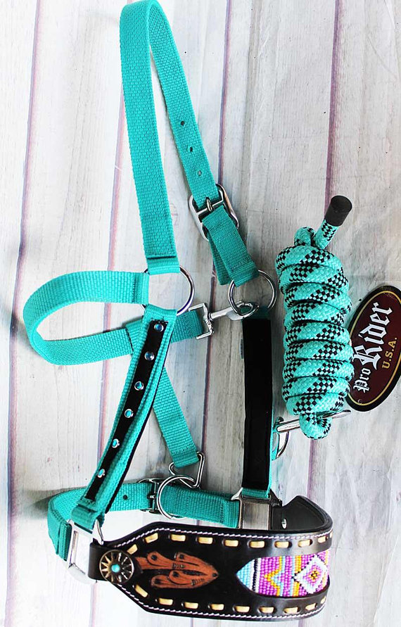 turquoise nylon halter with leather nose band