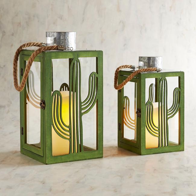 cactus lanterns